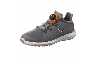 Chaussure de golf IGNITE PWRADAPT DISC pour homme Couleur QUIET SHADE-QUIET SHADE