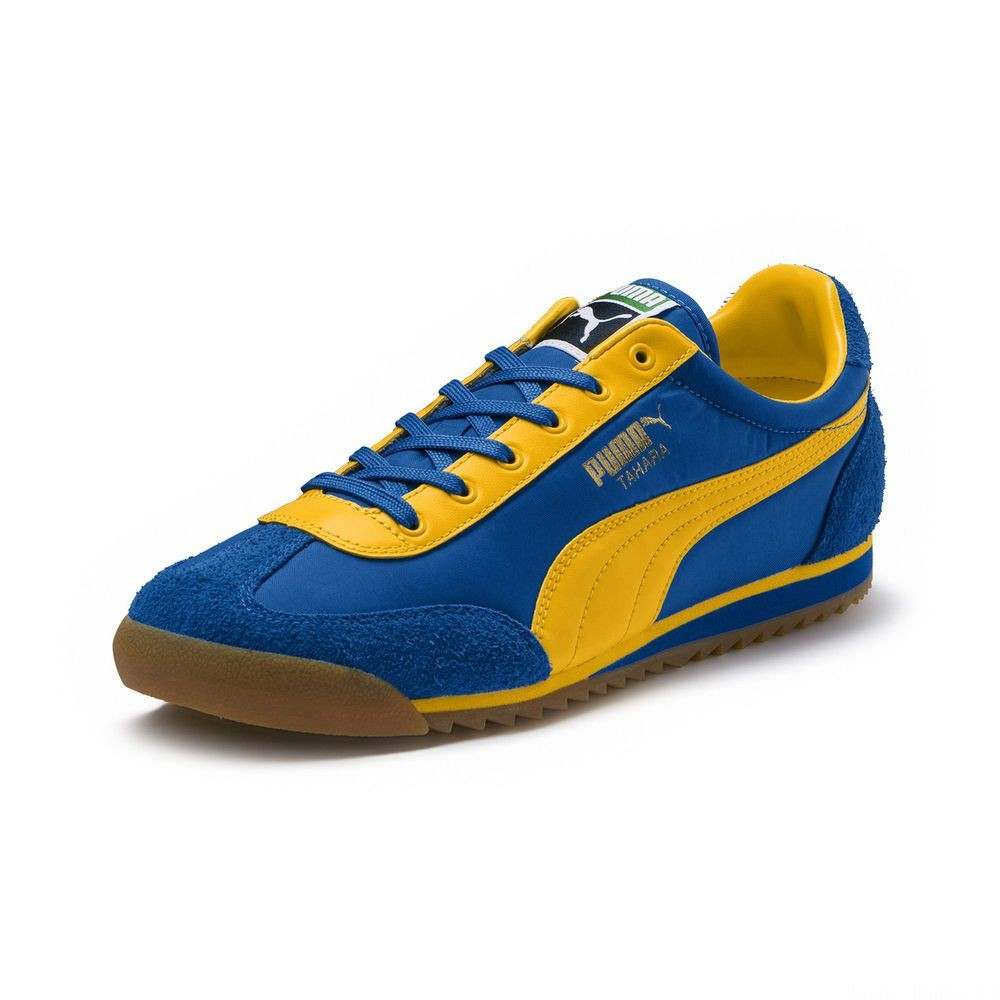Basket Tahara Original Couleur Strong Blue-Spectra Yellow